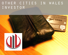 Other cities in Wales  investors