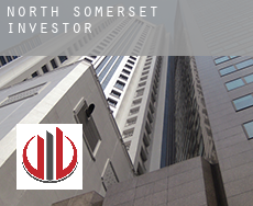 North Somerset  investors